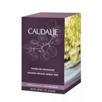 Каудаль чай фруктовый травяной (Caudalie) 30ml