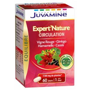 Купить Жувамин Эксперт циркуляция (Juvamine, Health Promises) 60 таблеток из категории Пищевые добавки