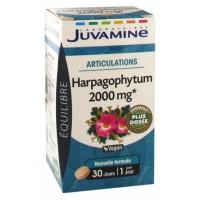 Жувамин Harpagophytum фито 2000 мг (Juvamine, Health Promises) 30 таблеток